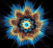 'Exploding Flower' by Scott Bricker