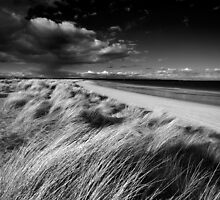 Studland Beach by stephen foote