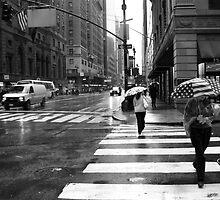 Patriot Rain New York-fine art photograph NYC by LJAphotography