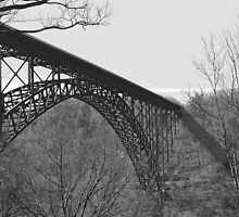 New River Gorge Bridge V by Lisawv
