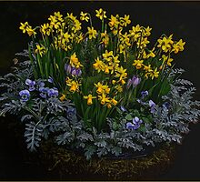 Essence of Spring by Gerda Grice