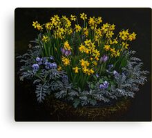 Essence of Spring Canvas Print