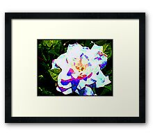 Coloured White Framed Print