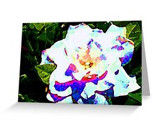 Coloured White Greeting Card