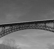 New River Gorge Bridge VI by Lisawv