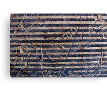 stripey thing Canvas Print