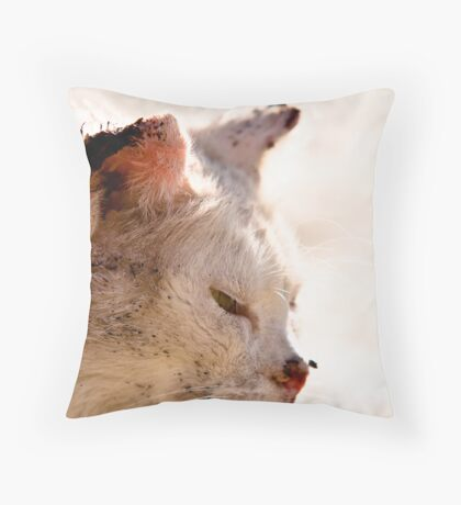Israeli street fighter series - 1 - wounded but proud Throw Pillow