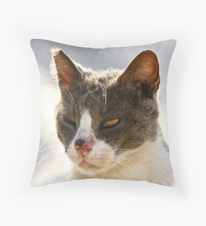 Israeli street fighter series - 2 - One eyed warrior Throw Pillow