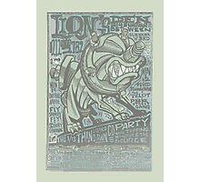 lion's den flyer Photographic Print