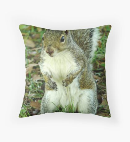 Do You Have Any Nuts?? Throw Pillow