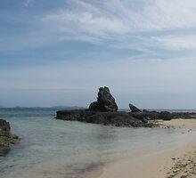 Monkey Island, Fiji by laurynwood