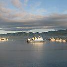 Suva, Fiji by laurynwood