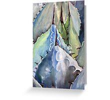 Blue Arizona Agave Greeting Card