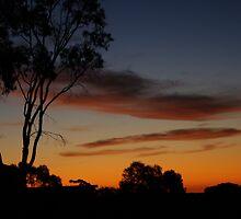 night approaching  by janfoster