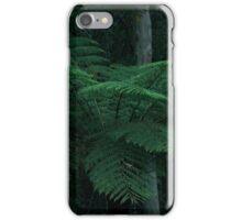 Giant Tree Fern  iPhone Case/Skin