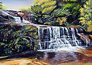 The Cascades, Blue Mountains by Linda Callaghan