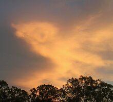 Birthday Sunset by Jenelle  Irvine