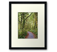 Enchanted Pathway Framed Print