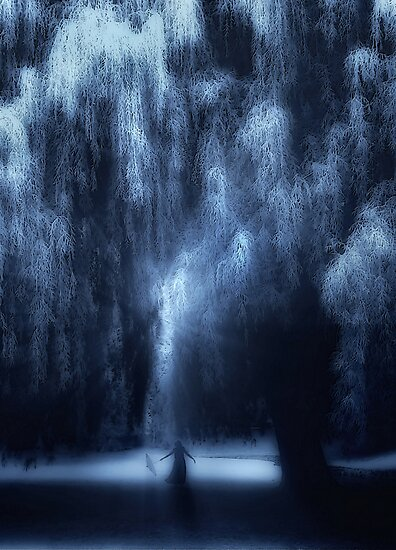 Dancing under the willow by Amanda  Cass