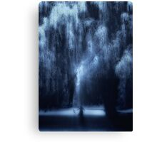 Dancing under the willow Canvas Print
