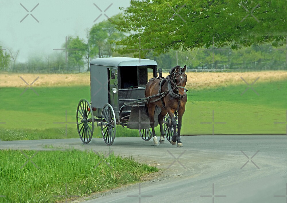 Country Ride by Dyle Warren