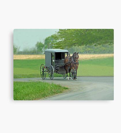 Country Ride Metal Print