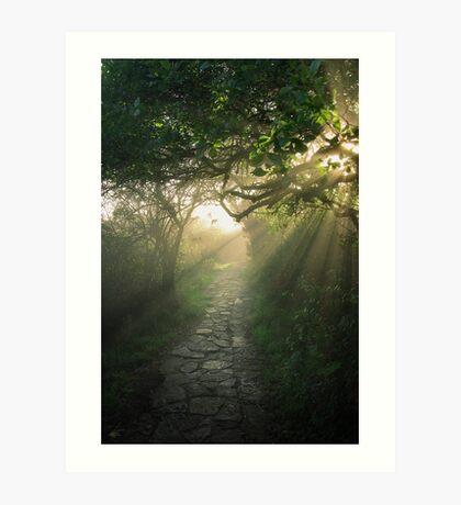 God's Path Art Print