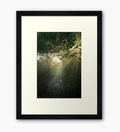 God's Path Framed Print