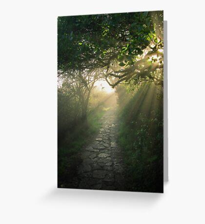 God's Path Greeting Card