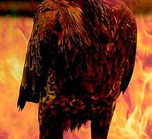 FIREBIRD ll by Gail Bridger