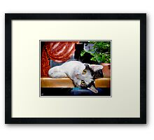 This Is Wee Little Winnie! Framed Print