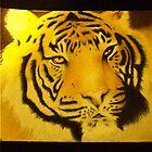 Tiger by Zahuli