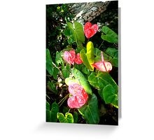 Home grown Hearts Greeting Card