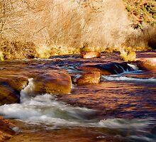 Oak Creek | Sedona, Arizona by Jeff Blanchard