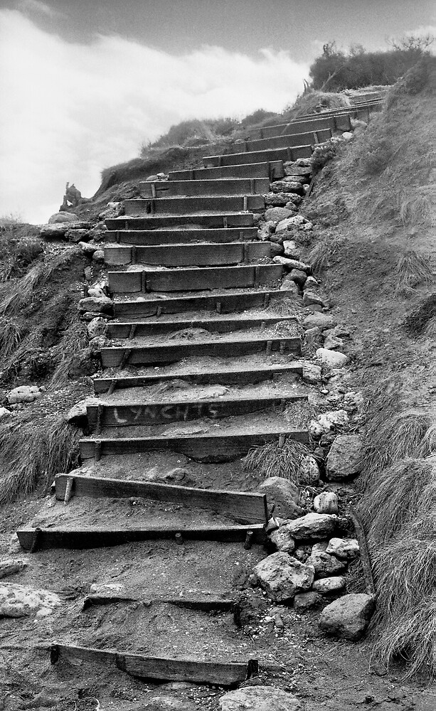 Bells Beach Steps by Wendy Mitchell