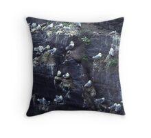 Kittiwakes on their cliff ledge nests, The Skelligs, Ireland. Throw Pillow