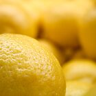 Lemons, Bright Yellow Lemons by David McIntyre