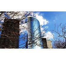 Corporate Branches Photographic Print