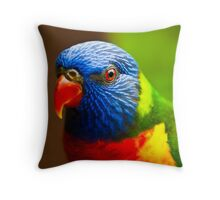 Rainbow Lorikeet V Detail Throw Pillow