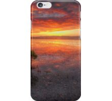Manukau  iPhone Case/Skin