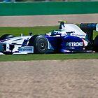 Team BMW Sauber - Petronas by Allen Gray
