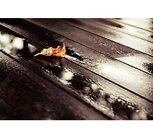 Into each life some rain must fall. Photographic Print