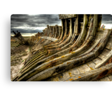 Dead boat skeleton Canvas Print