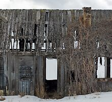 Voodoo Shack - Wyoming by Mitchell Tillison