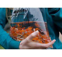 fishy by ellemia
