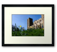 ripon cathedral Framed Print