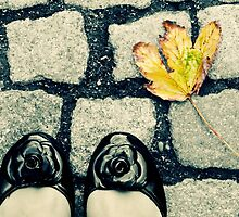 Setting Foot in the Fall by the-novice