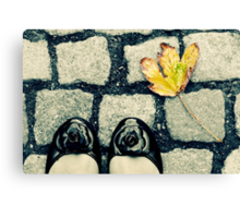 Setting Foot in the Fall Canvas Print