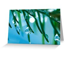 Icy Breeze.  Greeting Card