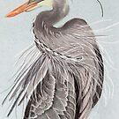 Great Blue Heron display by Linda Sparks